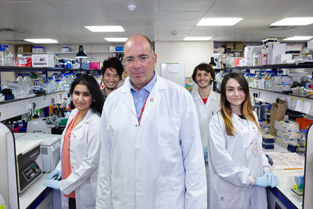 BHF Professor Mike Marber with his team in their lab KCL