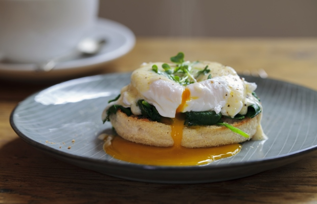 eggs florentine on china plate