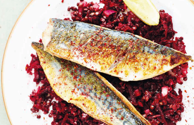 Griddled mackerel and beetroot lentil salad